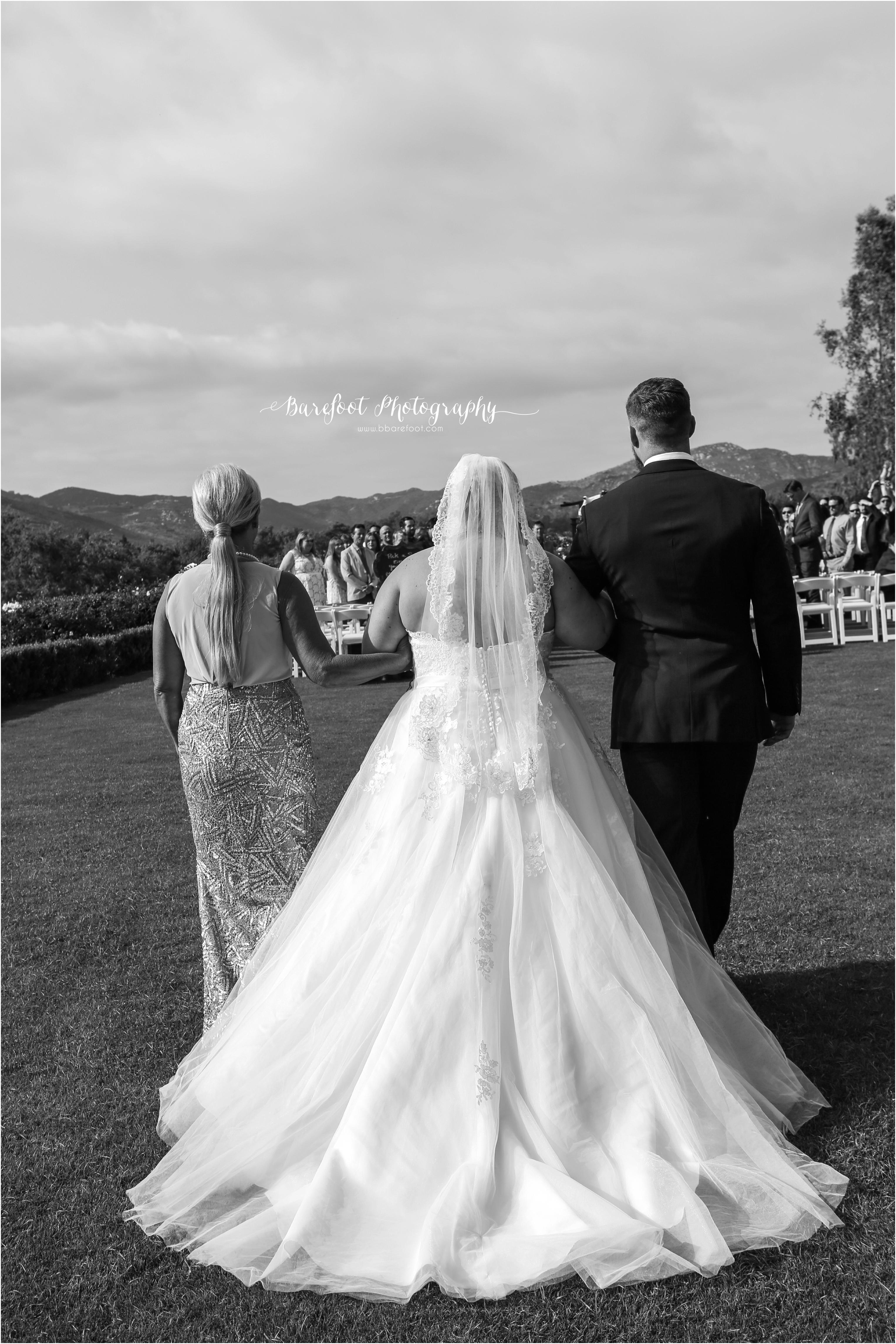 Torrey&Albert_Wedding_-460