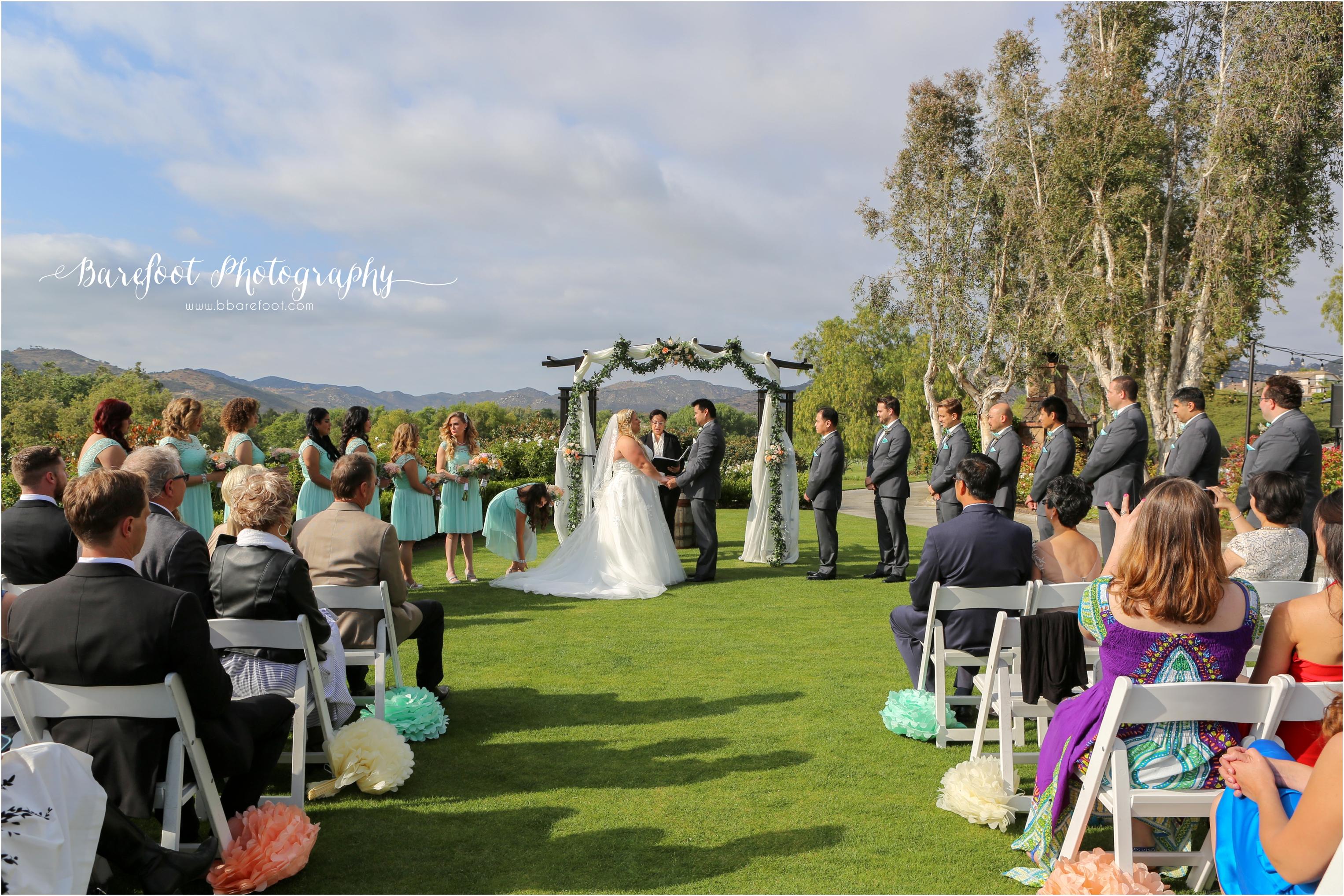 Torrey&Albert_Wedding_-476